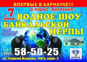 Нерпинарий в парке Арлекино Барнаул