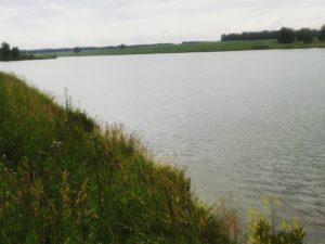 озера Алтайского края