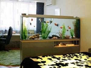 Где купить аквариум в Барнауле