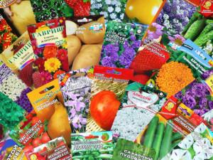 Где купить семена в Барнауле