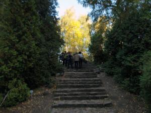 Где находится дендрарий в Барнауле