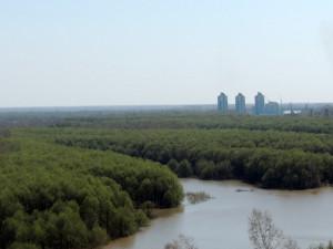 Отдых на природе в Барнауле