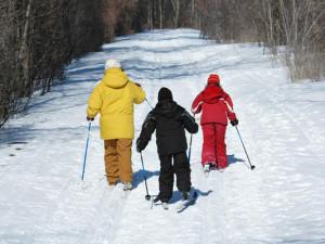 На лыжне в Барнауле